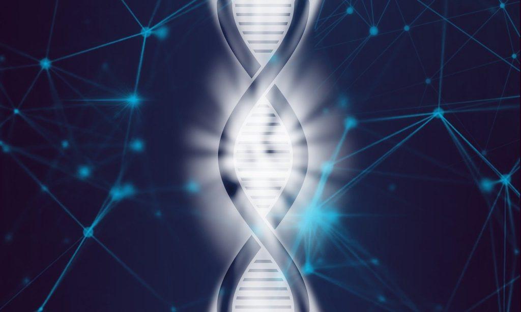 遺伝子検査でもっとも検査項目が多い